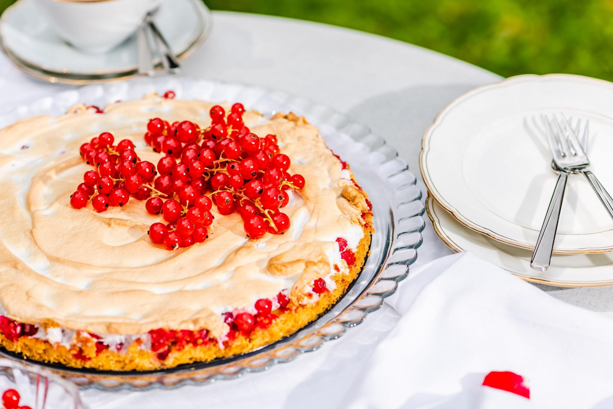 Ribiselschaum-Kuchen