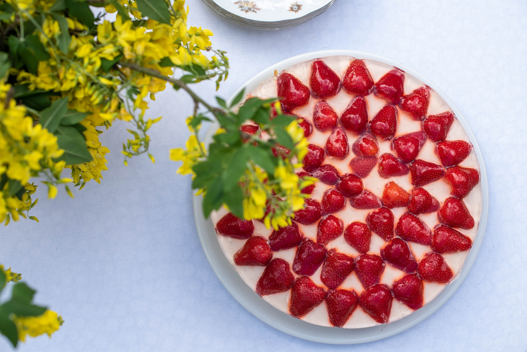 Joghurttorte mit Erdbeeren