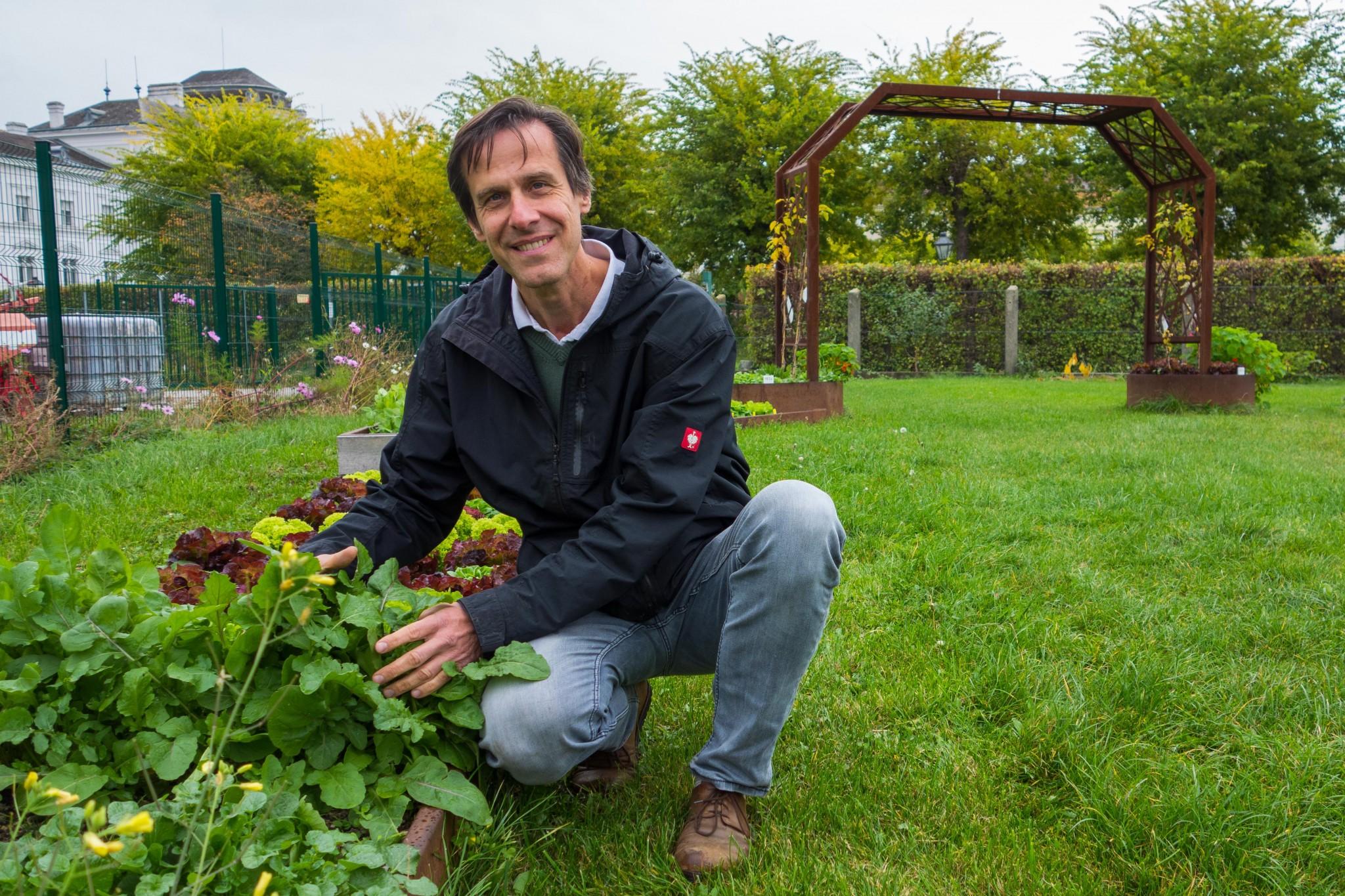 Wolfgang Palme lässt den Salat im Winter wachsen