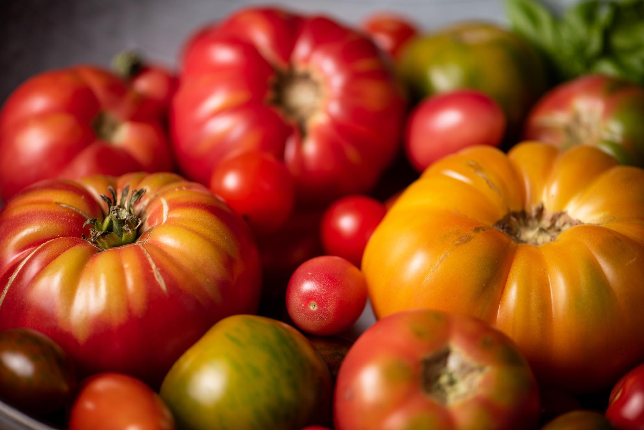 10 winterliche & nachhaltige Gemüse-Genusstipps